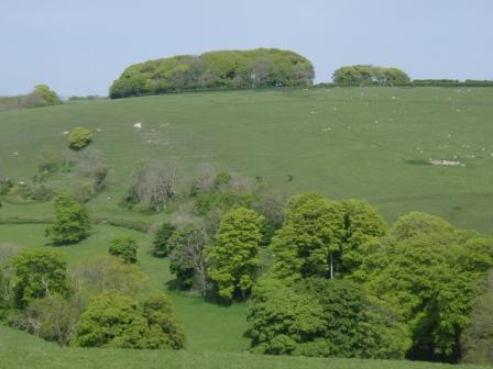 Basket Hill is north from Abbotsbury, the heart of the Dorset countryside